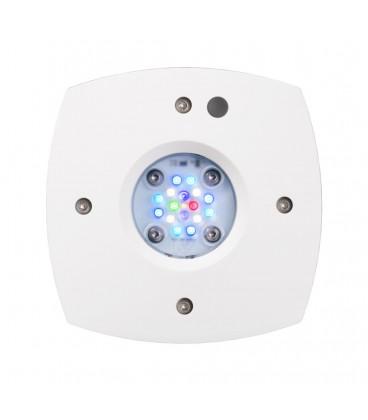 Prime Freshwater - Aqua Illumination